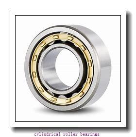 Link-Belt M1307EXW927 Cylindrical Roller Bearings