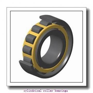 120 mm x 215 mm x mm  Rollway NJ 224 EM Cylindrical Roller Bearings