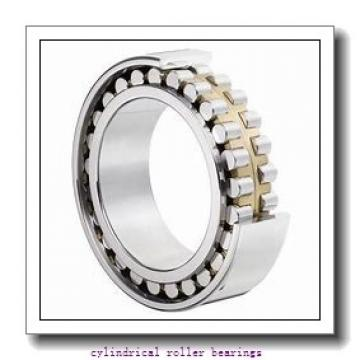 190 mm x 340 mm x 120.7 mm  Rollway E5238UMR Cylindrical Roller Bearings