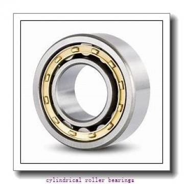 40 mm x 90 mm x 27 mm  Rollway UM1308B Cylindrical Roller Bearings