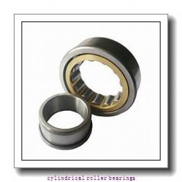 45 mm x 100 mm x mm  Rollway NU 309 EM C3 Cylindrical Roller Bearings