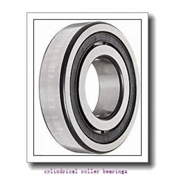 85 mm x 180 mm x mm  Rollway NJ 317 EM Cylindrical Roller Bearings
