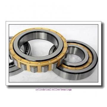 95 mm x 170 mm x mm  Rollway NJ 219 EM Cylindrical Roller Bearings