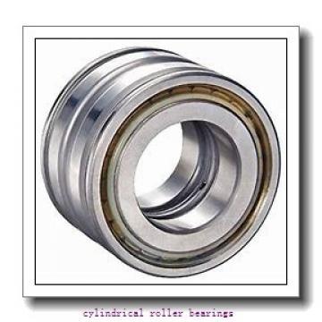 105 mm x 225 mm x mm  Rollway NU 321 EM Cylindrical Roller Bearings