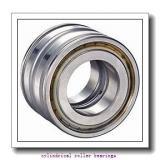 Link-Belt M1306UMW623 Cylindrical Roller Bearings